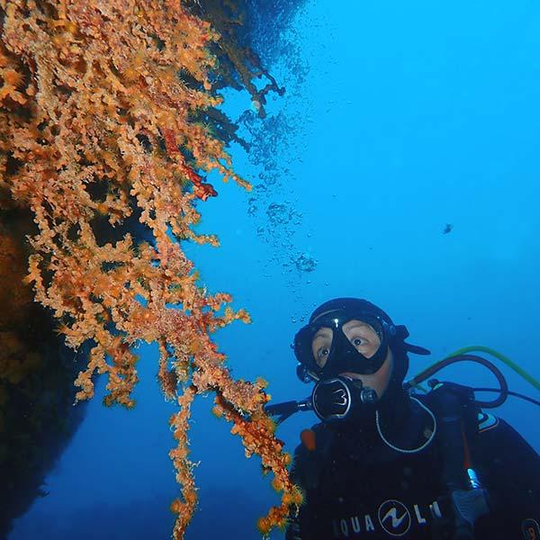 Buceo en los mejores puntos de inmersiones en Lanzarote con Manta Diving