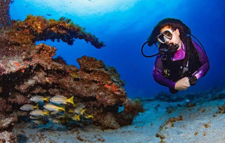 PADI Divemaster Course Canary Islands