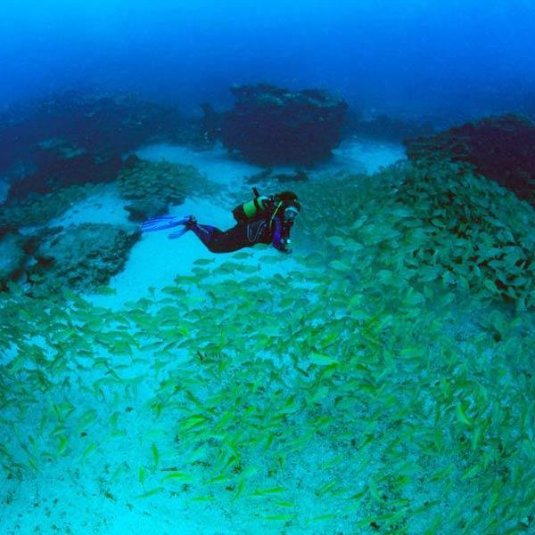 Buceo La Graciosa - Puntos de inmersiones en La Graciosa