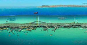 Dive Sites in Playa Blanca | Las Coloradas