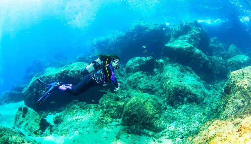Dive Lanzarote   Come scuba diving with Manta Diving Lanzarote