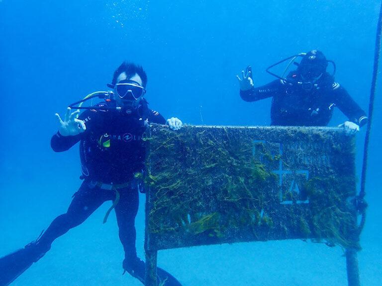Diving in Playa Blanca - Manta Diving Lanzarote