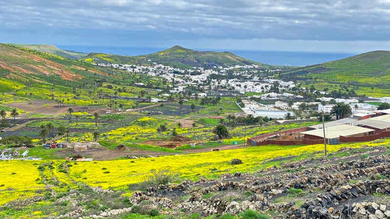 Vive la vida nómada digital en Lanzarote