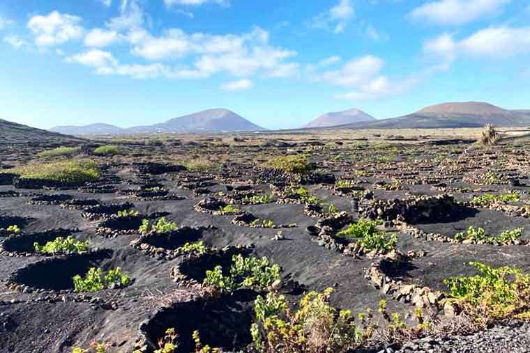 Visite Lanzarote: camine y vea las increíbles vistas del paisaje volcánico