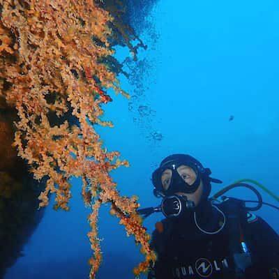 Buceo en Lanzarote con centro de buceo Manta Diving Lanzarote