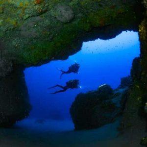 Contactarnos para organizar tus inmersiones de buceo en Lanzarote